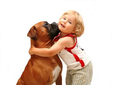 animal de  pagnie pour enfant pour ou contre